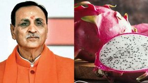 Gujarat government changed dragon fruit's name to kamalam