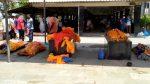 Gujarat Corona : ભરુચમાં 500 કરતા વધારે મોત અને ચોપડે માત્ર 36 ! મોતનાં આંકડા ફાડી રહ્યા છે મોઢુ