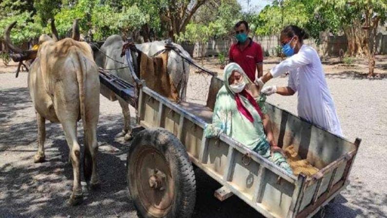 drive-through vaccination in bullock cart