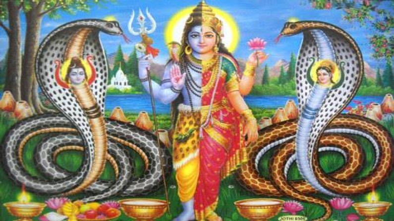 This land is excellent for Kalsarpa dosh nivarana Here Shiva-Parvati themself became Nageshwar-Nageshwari